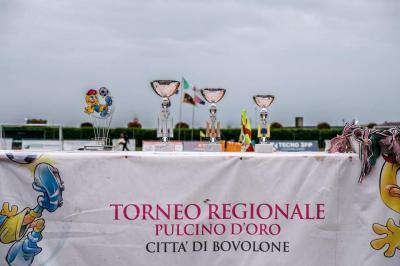 I Torneo Regionale Pulcino d'Oro città di Bovolone